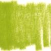 Faber Castell Pitt pastelpotloden los - 170 Meigroen