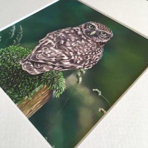 Prints/Kaarten