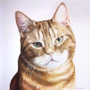 Dexter, Pastel, 70x70