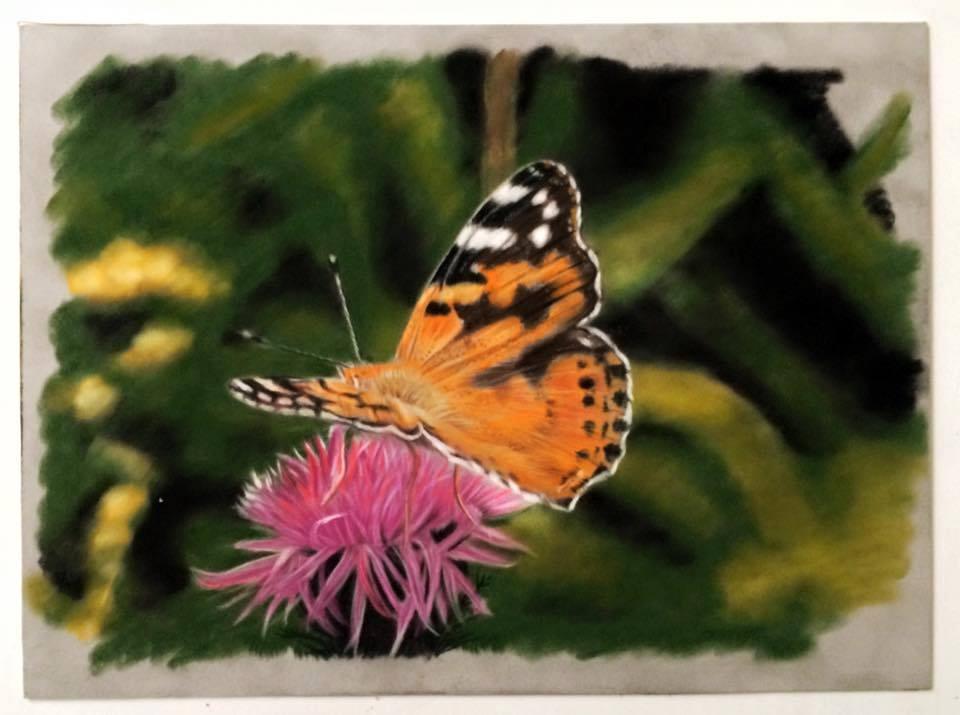 vlinder suede karton