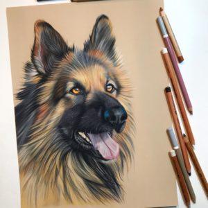 Online cursus: Honden tekenen met pastel