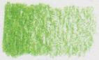 Koh I Noor Polycolor kleurpotloden LOS - 25 Gras groen