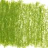 Derwent Lightfast kleurpotloden per stuk - 43. Foliage