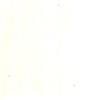 Caran d'ache Pablo kleurpotloden los - 491 Creme