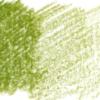 Derwent Lightfast kleurpotloden per stuk - 64. Foliage