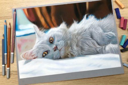 Uitbreiding online cursus katten tekenen in pastel: Witte kat