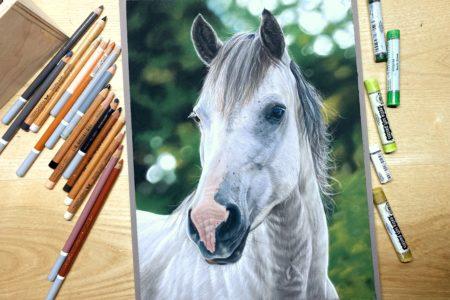 Online cursus: Paardenportret met pastel